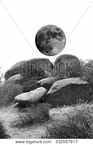 Desert Moon Over The Southwestern Usa Sonora Isolated Over White