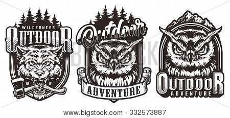 Vintage Outdoor Adventure Monochrome Labels With Nature Landscapes Serious Owls Heads And Ferocious