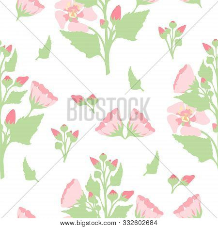 Pattern With Marsh-mallow Bush, Flowers And Buds