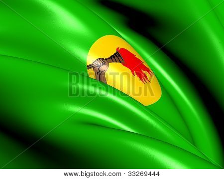 Republic of Zaire Flag. Close Up. Front View. poster