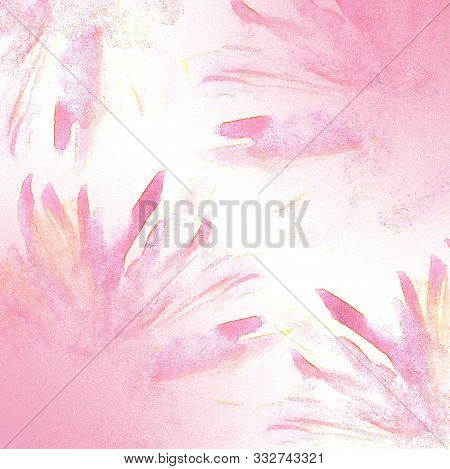 Abstract Background. Pink Chrysanthemums. Pink Spring Flowers. Gentle Light Background