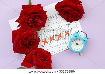Blue Alarm Clock And Red Rose Flowers On Menstrual Period Calendar With Red Cross Marks