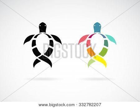 Vector Of Turtle Design On White Background. Wild Animals. Underwater Animal. Turtles Icon Or Logo.