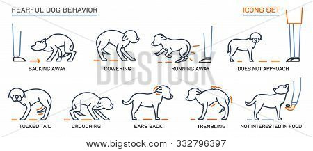 Dog Fearful Behavior Icons Set. Domestic Animal Or Pet Tail Language. Line Pictograms Collection. Do