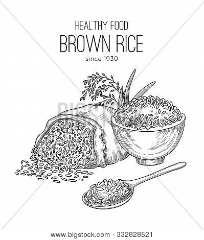 Rice Hand Drawn. Agricultural Background With Sacks Grains Wheat Healthy Natural Organic Food White