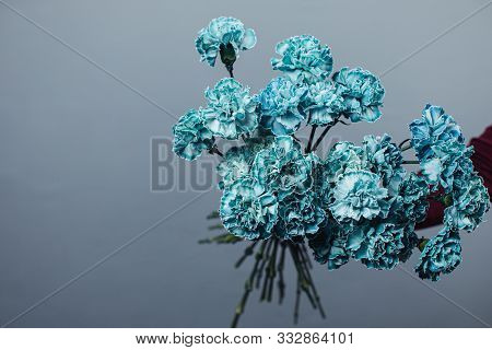 Beautiful Bouquet Of Tinted Dyed Carnations. Flower Delivery