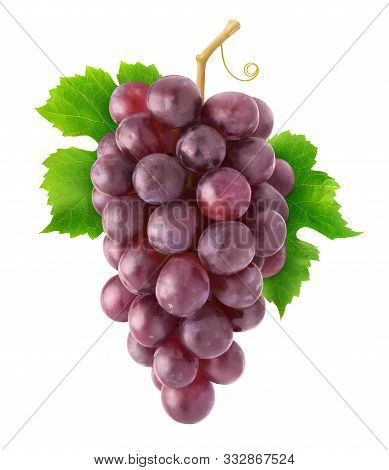 Isolated Grapes. Hanging Cluster Of Red Grapes Isolated On White Background With Clipping Path