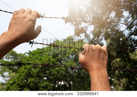 A Man's Hand Seized Barbed Wire Tightly And Sunlight. Escape For Freedom.