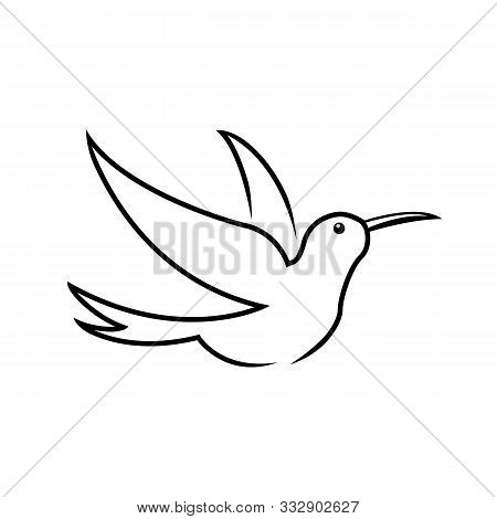 Stylized Hummingbird Icon Or Logo In Different Styles: Line Art, Solid Black And Color. Isolated Col