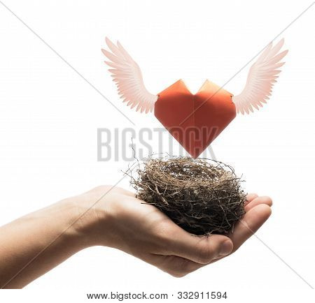 Bird Nest With Red Heart In Woman Hand. Image On Isolated White Background. Concept Of Love,  Marita