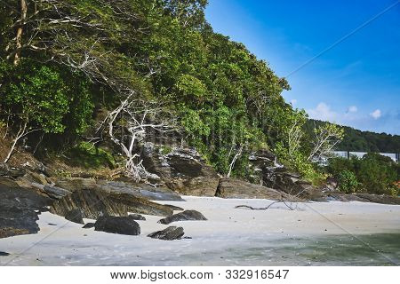 Hillside With Black Rocks And Green Trees, Plants On The Shores Of The Sandy Beautiful Exotic And St