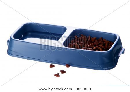 Cat Food And Water Bowl