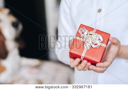 Small Gift In The Hands Of Little Girl Present For Christmas, Valentine Day, New Year, Birthday. Top