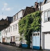 Row of typical mews houses in London, UK, partially covered by climber plant, selective focus. Real estate and property concept. poster