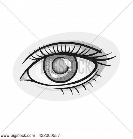 Vector Design Of Eye And Eyesight Logo. Web Element Of Eye And Diagnostic Vector Icon For Stock.