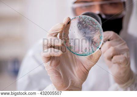 Young male chemist working at the lab during pandemic