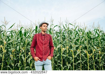 Portrait Of African American Farmer With Hat On Corn Crops In Background