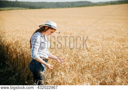 A Woman Farmer With Hat, Plant Specialist, Analyzing The Field Wheat, Concept Ecology, Bio Product,