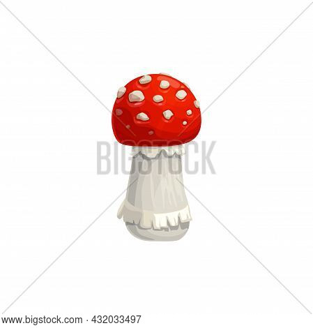 Amanita Mushroom, Autumn Muscaria, Vector Isolated Icon. Fall Nature And Thanksgiving Holiday Harves