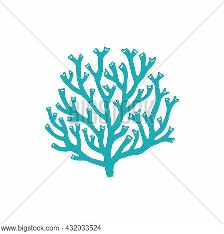 Catalaphyllia Jardinei Large Polyp Stony Calcareous Coral Isolated Icon. Vector Acropids, Aquarium S