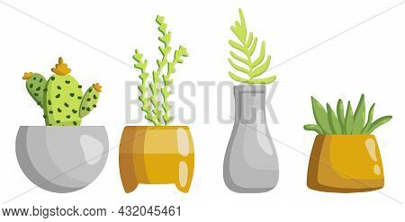 Collection Of Flower Pots With Plants. Vector Set Of Cozy Cute Indoor Flowers Isolated On A White Ba