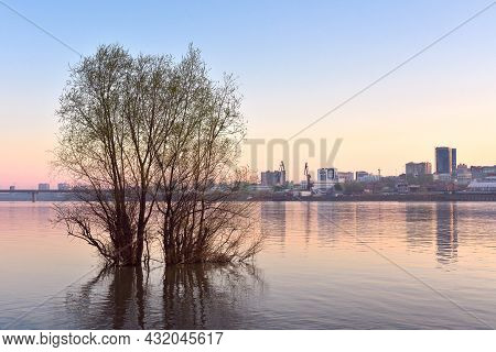 Early Morning On The Great Siberian River, A Tree In The Middle Of The Ob River, The Capital Of Sibe