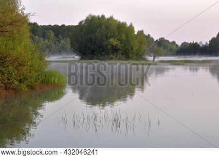 River Bank In The Early Morning. Trees On The Bank Of The Ob River In The Early Morning. Grass, Refl