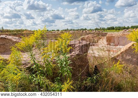 Blocks Of Red Granite Lie Among The Flowering Canadian Goldenrod And Other Grass On Edge Of Granite