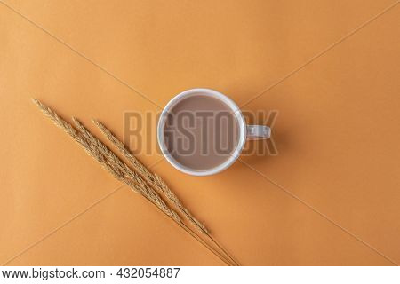 Autumn Still Life With Cup Of Coffee And Beige Pampas Grass Reeds On Orange Background. Minimal, Sty