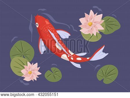 Traditional Japanese Koi Fish Swimming In Decorative Pond Of Asian Water Garden. Peaceful Ornamental