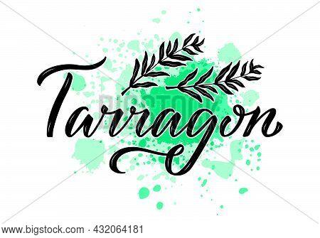 Vector Illustration Of Tarragon Lettering For Packages, Product Design, Banner, Spice Shop  Price Li