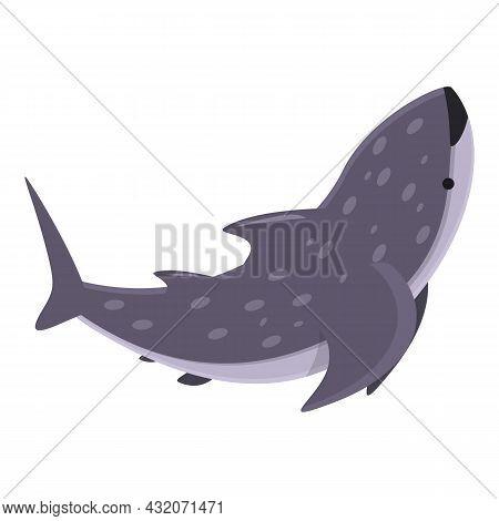 Ocean Whale Shark Icon Cartoon Vector. Fish Sea. Aquatic Animal