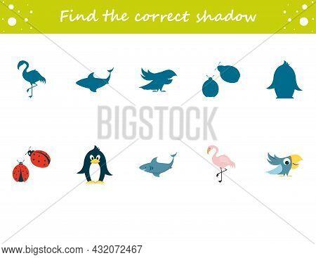 Find The Correct Shadow Penguin, Ladybug, Parrot, Flamingo, Shark. Education Worksheet. Matching Gam