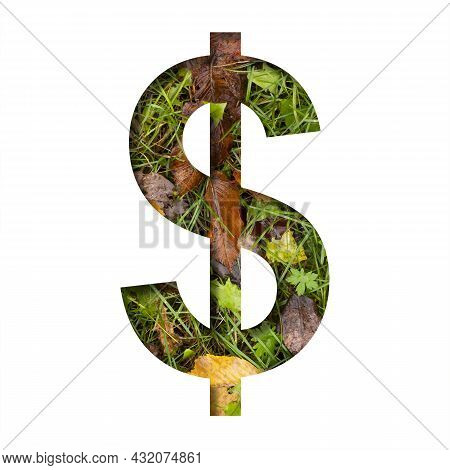 Early Autumn Font. Dollar Money Business Symbol Cut Out Of Paper On A Background Of Green Grass With
