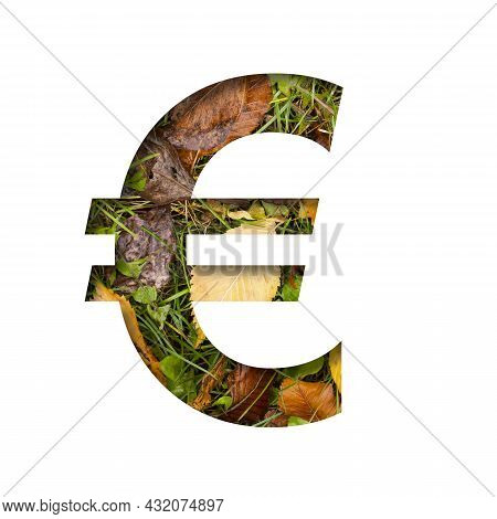 Early Autumn Font. Euro Money Business Symbol Cut Out Of Paper On A Background Of Green Grass With Y