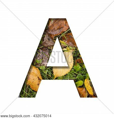 Early Autumn Font.the Letter A Cut Out Of Paper On A Background Of Green Grass With Yellow Autumn Le