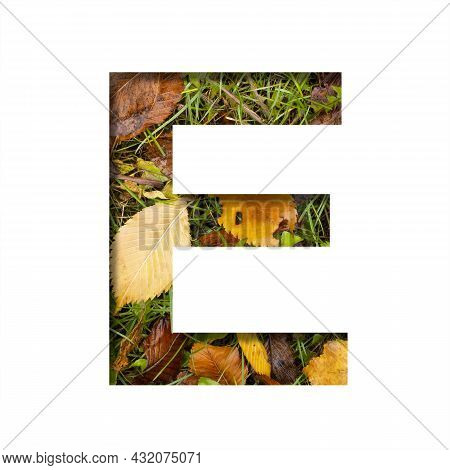 Early Autumn Font.the Letter E Cut Out Of Paper On A Background Of Green Grass With Yellow Autumn Le