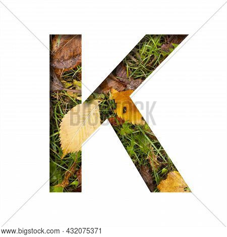 Early Autumn Font.the Letter K Cut Out Of Paper On A Background Of Green Grass With Yellow Autumn Le