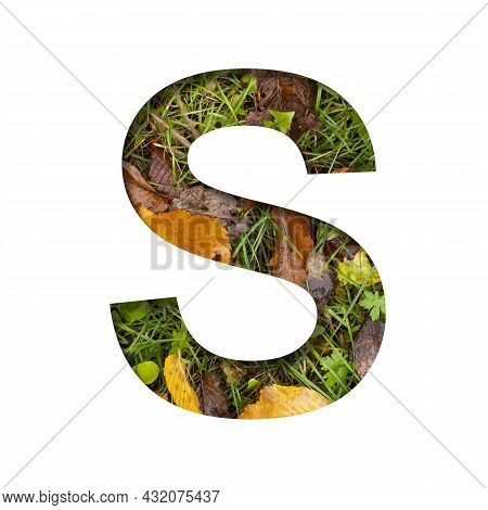 Early Autumn Font.the Letter S Cut Out Of Paper On A Background Of Green Grass With Yellow Autumn Le