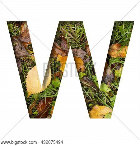 Early Autumn Font.the Letter W Cut Out Of Paper On A Background Of Green Grass With Yellow Autumn Le