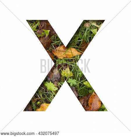 Early Autumn Font.the Letter X Cut Out Of Paper On A Background Of Green Grass With Yellow Autumn Le