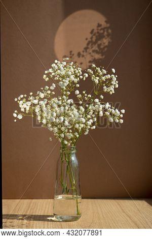 Minimalistic Still Life. Glass Vase With White Dried Flowers On Brown Background. Stylish Minimalist