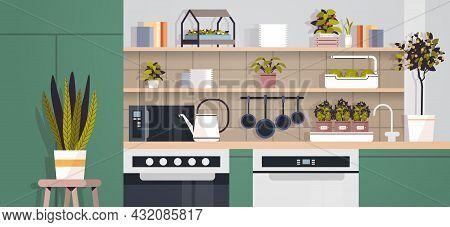 Potted Plants Home Gardening Concept Modern Kitchen Interior Horizontal