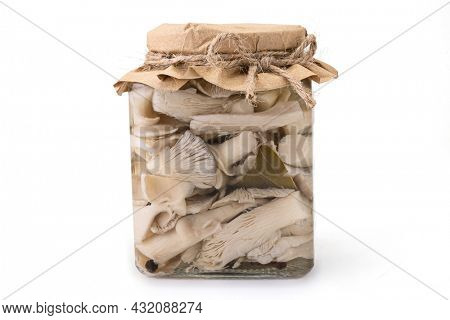 Glass jar with pickled Oyster mushrooms isolated on white