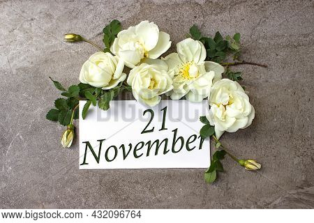 November 21st . Day 21 Of Month, Calendar Date. White Roses Border On Pastel Grey Background With Ca