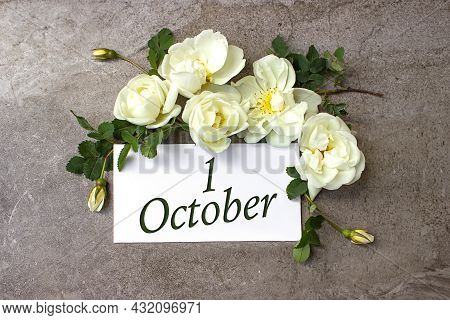 October 1st . Day 1 Of Month, Calendar Date. White Roses Border On Pastel Grey Background With Calen