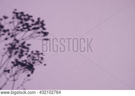 Trending Concept In Natural Materials With Plant Shadow. Presentation With Daylight. Natural Blurred