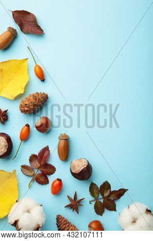 Autumn Composition. Dried Leaves, Flowers, Berries On Blue Background. Thanksgiving Day Concept. Ver