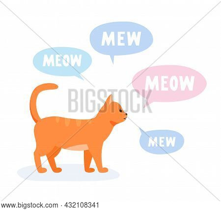 Vocal Domestic Cat Talking And Yelling. Talkative Cat Meowing And Yowling A Lot. Vector