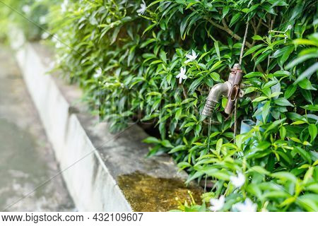 Old Water Tap Or Faucet Leaking Drop Of Water With Green Nature Background- Water Conservation Or Sa